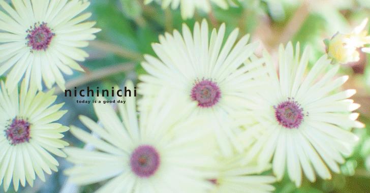 20170527_icatch_image_01