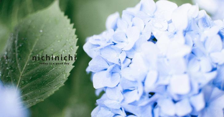 『6月編』今日の暮らしを楽しむ季節の行事・風物詩・二十四節気・七十二候などまとめ。