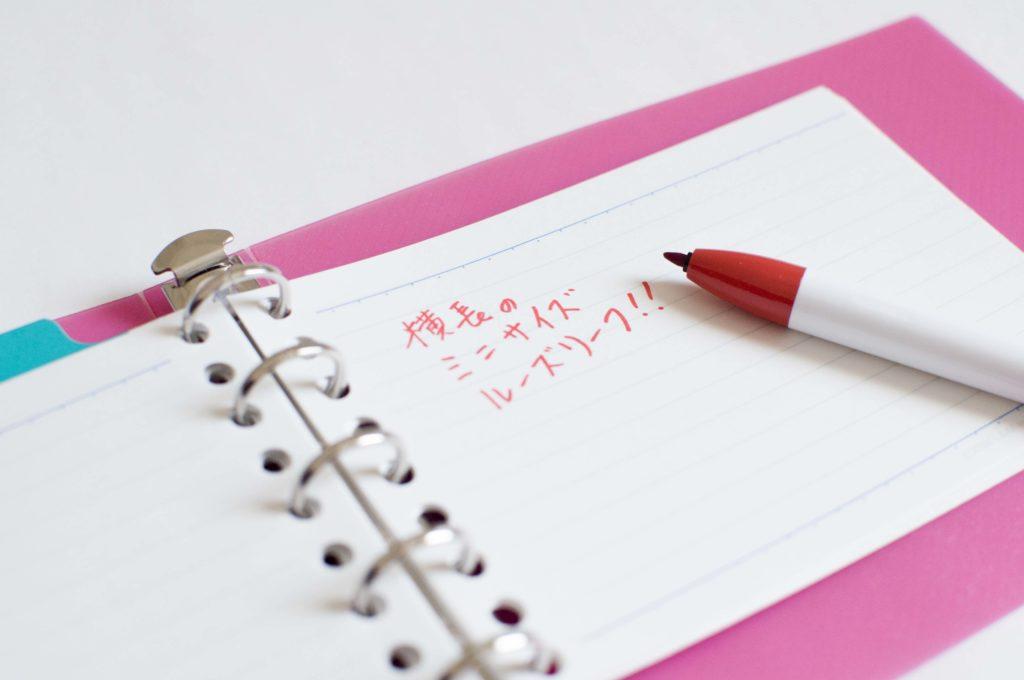 マルマン・ファイルノート・ルーズリーフ ミニ(記入イメージ)